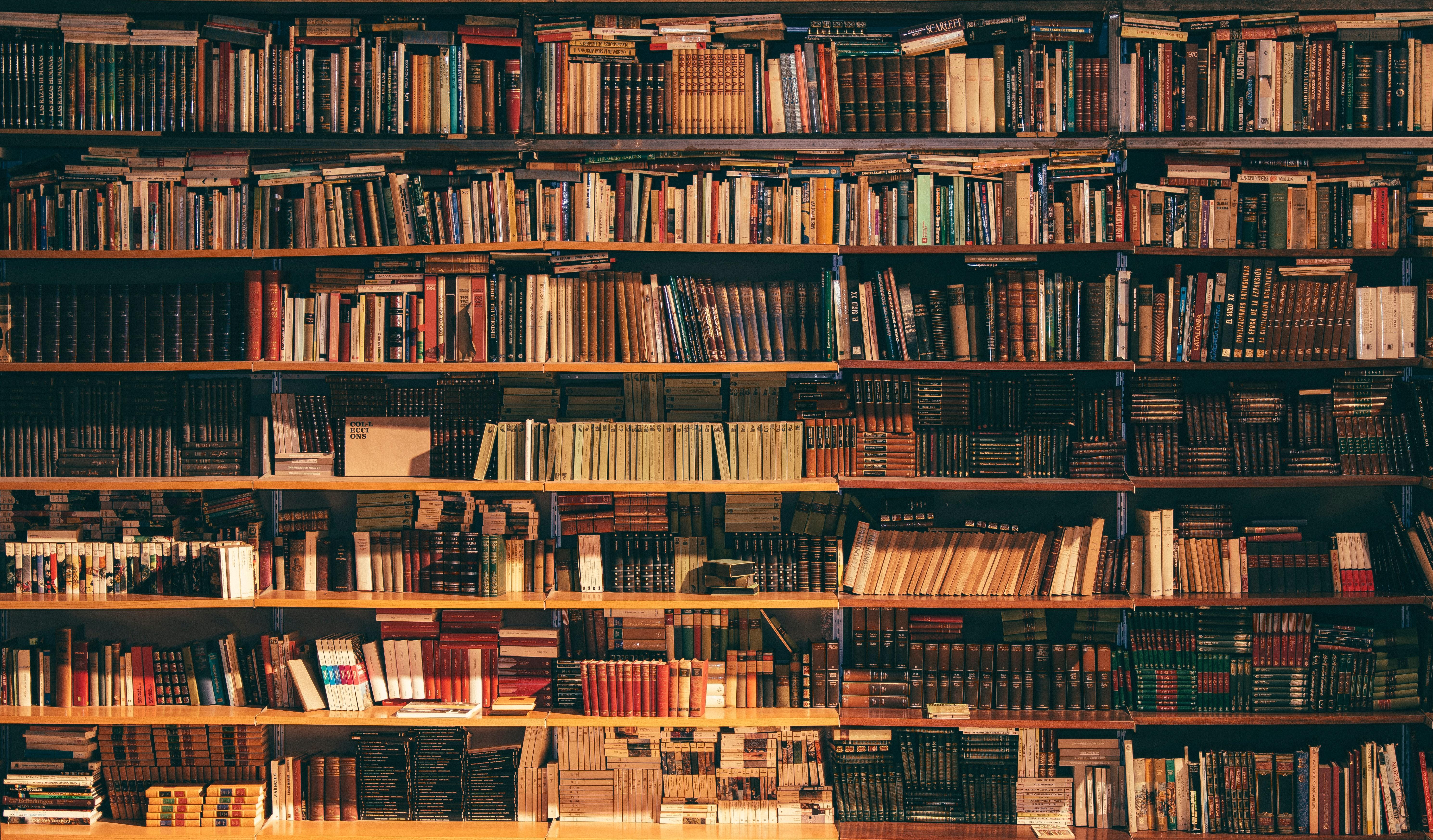 Library shelve